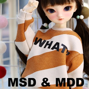 MSD & MDD WHAT MTM - Orange